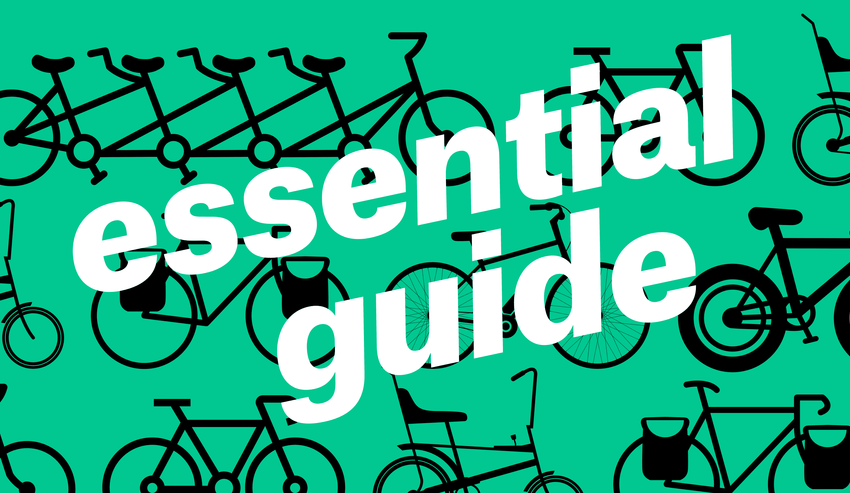 Essential Guide